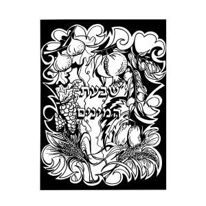 Velvet Art- Shivas Haminim