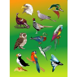 Stickers – Birds, 25 sheets