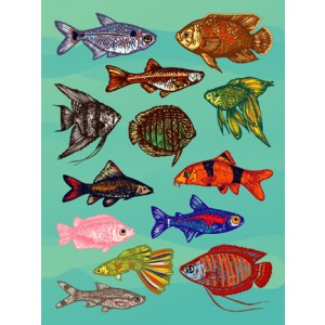 Stickers – Fish, 25 sheets
