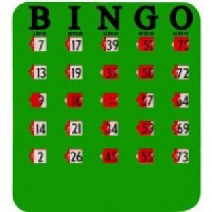 Fingertip Bingo Cards 25/pk