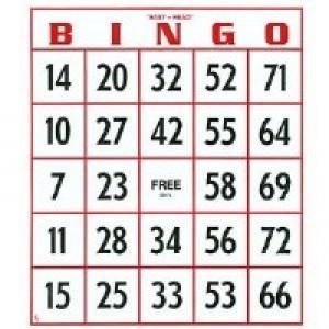 Easy Read Bingo Cards 25/pk